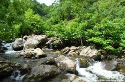 雨竜沼湿原(ペンケペタン川)