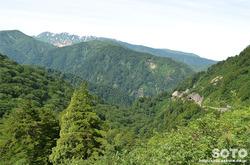 白山スーパー林道(白山を望む)
