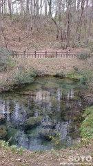 塩釜の冷泉(4)