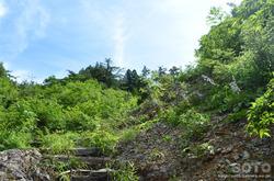 白山スーパー林道(瓢箪谷上園地への道)