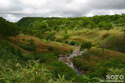 雨竜沼湿原(渓谷)