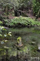 池山水源(水神様)
