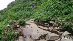 ニセイカウシュッペ登山(9)