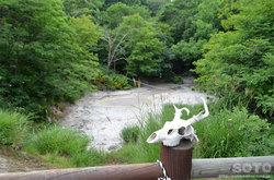 阿寒湖ボッケ遊歩道(2)