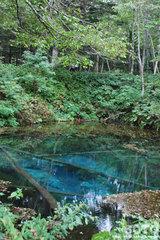 神の子池(2)