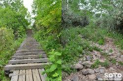 雨竜沼湿原(湿原展望台への登り)