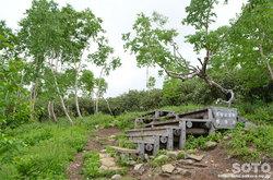 雨竜沼湿原(湿原展望台)