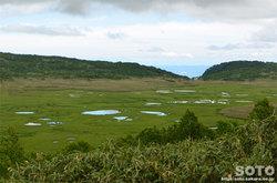 雨竜沼湿原(湿原展望台からの眺め)