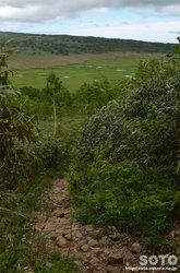 雨竜沼湿原(湿原展望台から降りる途中)