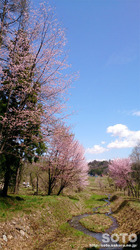 姫川源流(4)