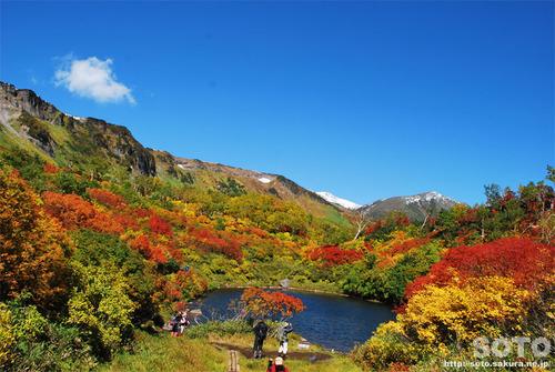 高原温泉沼2014紅葉