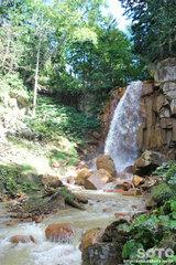 白藤の滝(5)