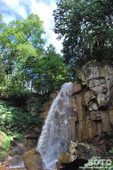白藤の滝(6)