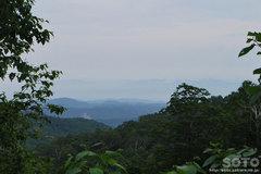 険竜坂からの風景