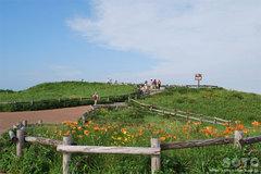 小清水原生花園(展望台)