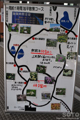 旭平周辺散策路 案内図