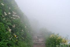 黒岳(6)