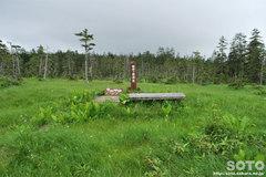 雲井ヶ原湿原(展望所)