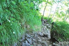 銀泉台(登山道3)