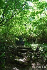 高原温泉沼めぐり(4)