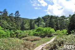 高原温泉沼めぐり(6)