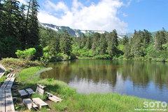 高原温泉沼(緑の沼)