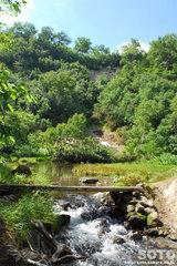高原温泉沼めぐり(7)