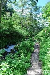 高原温泉沼めぐり(8)