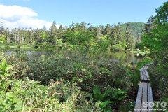 高原温泉沼めぐり(緑の沼・復路)