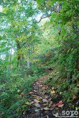 滝見台へ(2)
