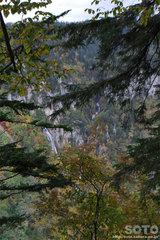滝見台へ(8)