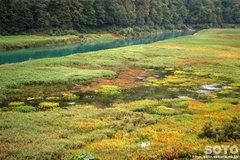 八幡平(秋扇湖2)