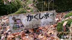 男池湧水群(かくし水/4)