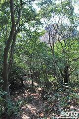 不動岩登山(6974)