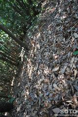 不動岩登山(6983)