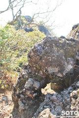 不動岩登山(7015)