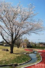 前川水源(公園)