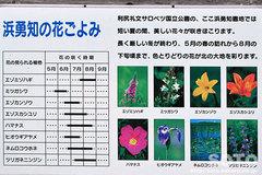 浜勇知(案内板2)