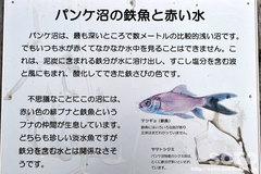 パンケ沼(案内板1)