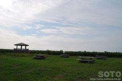 パンケ沼(2)