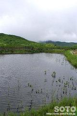 羅臼湖(4の沼)