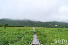 羅臼湖(羅臼湖)