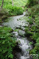 熊越えの滝(清流2)