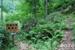 熊越えの滝(分岐点)