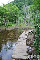 熊越えの滝(川2)