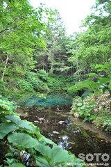 神の子池(3)