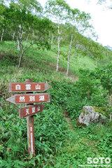 東雲湖トレッキング(分岐2)