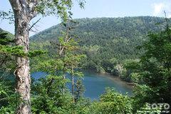 駒止湖(道道85号線から)