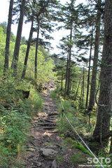 駒止湖への道