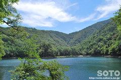 豊似湖(4)